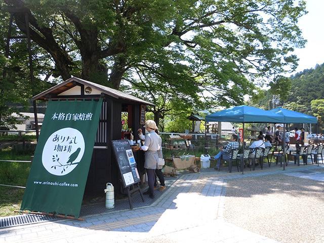 【地域プロジェクト】NPO法人 大きな樹インタビュー